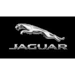 Concessionario veicoli Jaguar Torino