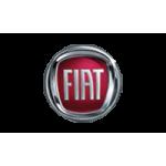 Concessionario veicoli Fiat Torino