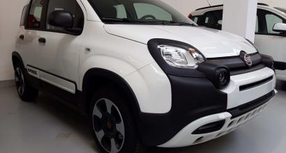 Disponibile nella concessionaria di Torino FIAT PANDA 1.2 69CV CITY CROSS